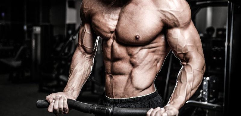 amazing-tren-body-example