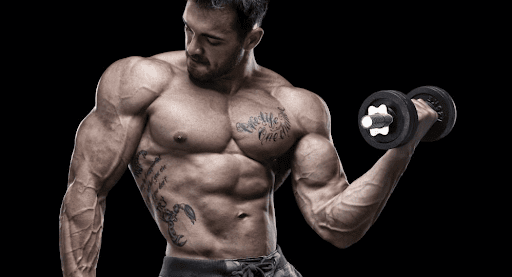 boldenone-undecylenate-guy