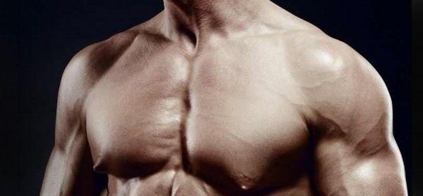 bodybuilder-chest
